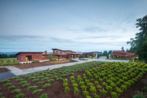 west linn modern barn architect